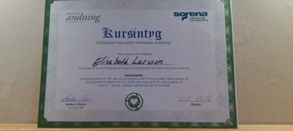 Kursintyg - Cert andningsinstruktör - Medveten andning